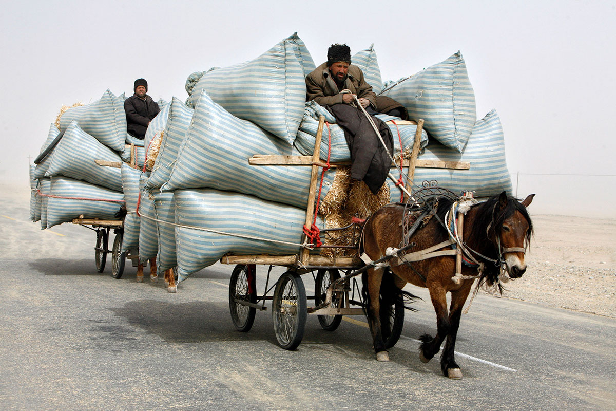 growing without tech is like overloading your single horse carriage with a ton of bricks